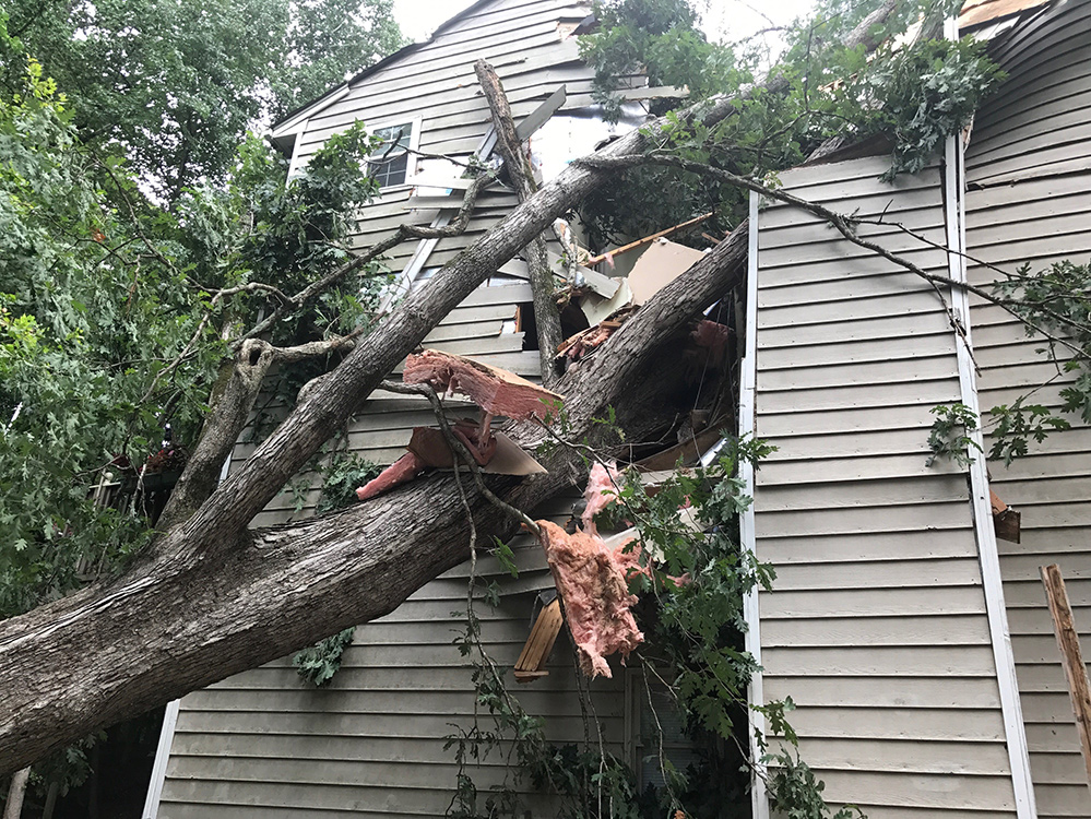 apartment damaged by tree